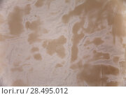 Купить «Gesso fresh plaster texture in stucco wall construction», фото № 28495012, снято 10 февраля 2013 г. (c) Ingram Publishing / Фотобанк Лори