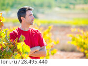 Купить «Harvester winemaker farmer proud of his vineyard in autumn golden red leaves at Mediterranean», фото № 28495440, снято 17 октября 2013 г. (c) Ingram Publishing / Фотобанк Лори