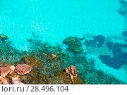 Купить «Cala Macarella Ciudadela Menorca turquoise Mediterranean sea in Balearic islands», фото № 28496104, снято 25 мая 2013 г. (c) Ingram Publishing / Фотобанк Лори