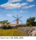 Menorca Sant Lluis San Luis Moli de Dalt windmill in Balearic islands of Spain (2013 год). Стоковое фото, фотограф Tono Balaguer / Ingram Publishing / Фотобанк Лори