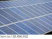 Купить «Solar plates for green sun energy in a row», фото № 28496932, снято 27 июня 2013 г. (c) Ingram Publishing / Фотобанк Лори