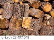 Купить «Firewood of pine tree stacked in a row at Spain», фото № 28497048, снято 13 октября 2013 г. (c) Ingram Publishing / Фотобанк Лори