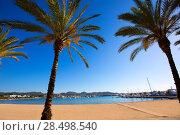 Ibiza san Antonio Abad de Portmany beach in Balearic Islands of spain (2013 год). Стоковое фото, фотограф Tono Balaguer / Ingram Publishing / Фотобанк Лори