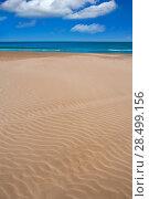 Купить «Valencia Malvarrosa Patacona beach in Mediterranean sea of Spain», фото № 28499156, снято 17 июня 2019 г. (c) Ingram Publishing / Фотобанк Лори