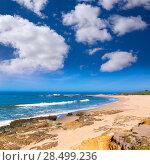 Купить «California Bean Hollow State beach in Cabrillo Highway on State Route 1 San Mateo», фото № 28499236, снято 22 апреля 2013 г. (c) Ingram Publishing / Фотобанк Лори