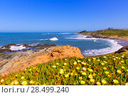 Купить «California Bean Hollow State beach in Cabrillo Highway on State Route 1 San Mateo», фото № 28499240, снято 22 апреля 2013 г. (c) Ingram Publishing / Фотобанк Лори
