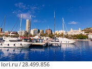 Купить «Alicante marina port boats in Mediterranean Spain Valencian Community», фото № 28499856, снято 21 января 2014 г. (c) Ingram Publishing / Фотобанк Лори