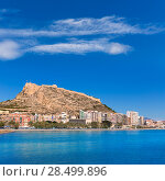 Купить «Alicante Postiguet beach and castle Santa Barbara in Spain Valencian Community», фото № 28499896, снято 21 января 2014 г. (c) Ingram Publishing / Фотобанк Лори