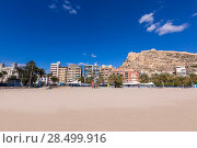 Купить «Alicante Postiguet beach and castle Santa Barbara in Spain Valencian Community», фото № 28499916, снято 21 января 2014 г. (c) Ingram Publishing / Фотобанк Лори