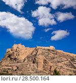Купить «Alicante Santa Barbara castle in Mediterranean spain Valencian Community», фото № 28500164, снято 21 января 2014 г. (c) Ingram Publishing / Фотобанк Лори