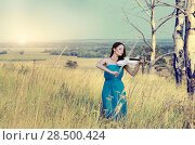Купить «Young beautiful woman in dark cyan dress playing music on white fiddle», фото № 28500424, снято 30 июля 2013 г. (c) Ingram Publishing / Фотобанк Лори