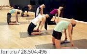 Купить «Smiling young women training yoga positions in modern yoga studio», видеоролик № 28504496, снято 14 февраля 2018 г. (c) Яков Филимонов / Фотобанк Лори