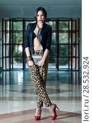 Купить «Portrait of young beautiful woman, model of fashion, wearing leopard pants, jacket and red high heels», фото № 28532924, снято 18 мая 2013 г. (c) Ingram Publishing / Фотобанк Лори