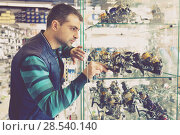 Купить «Male choosing baitcasting reel for rod for fishing in the sports shop», фото № 28540140, снято 16 января 2018 г. (c) Яков Филимонов / Фотобанк Лори