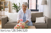 Купить «happy senior woman putting flowers to vase at home», видеоролик № 28544520, снято 29 мая 2018 г. (c) Syda Productions / Фотобанк Лори