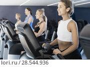 Купить «Slender athletic girls running on treadmill in fitness club», фото № 28544936, снято 26 июля 2017 г. (c) Яков Филимонов / Фотобанк Лори