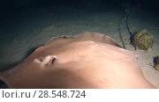 Купить «Two Pink whipray - Himantura fai on a sandy bed at night, Indian Ocean, Maldives», видеоролик № 28548724, снято 6 июня 2018 г. (c) Некрасов Андрей / Фотобанк Лори
