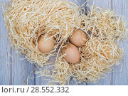 Купить «Натюрморт с куриными яйцами на деревянной стружке», фото № 28552332, снято 4 июня 2018 г. (c) V.Ivantsov / Фотобанк Лори