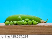 Купить «Зелёный горошек крупным планом на деревянной доске», фото № 28557284, снято 4 июня 2018 г. (c) V.Ivantsov / Фотобанк Лори