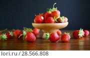 Купить «Ripe red organic strawberry», видеоролик № 28566808, снято 7 июня 2018 г. (c) Peredniankina / Фотобанк Лори