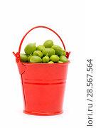 Купить «Полное ведро свежего зелёного горошка на белом фоне», фото № 28567564, снято 4 июня 2018 г. (c) V.Ivantsov / Фотобанк Лори