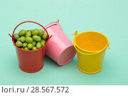 Купить «Натюрморт с вёдрами и зелёным горошком на зелёном фоне», фото № 28567572, снято 4 июня 2018 г. (c) V.Ivantsov / Фотобанк Лори
