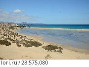 Купить «Sotavento lagoon, looking towards the Windsurf Centre and windsurfers, near Jandia, Fuerteventura, Canary Isalnds, May.», фото № 28575080, снято 16 июля 2018 г. (c) Nature Picture Library / Фотобанк Лори