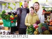 Купить «Family with purchases in fruit market», фото № 28577212, снято 13 февраля 2018 г. (c) Яков Филимонов / Фотобанк Лори