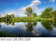 Купить «Красивый летний пейзаж. Деревья и небо с облаками отражаются в реке», фото № 28581520, снято 13 июня 2018 г. (c) Яна Королёва / Фотобанк Лори