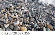 Купить «Fragment of Black Sea coast with a pebble beach», видеоролик № 28587356, снято 15 июня 2018 г. (c) Володина Ольга / Фотобанк Лори