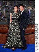 Купить «Fantastic Beasts UK Premiere held at Cineworld Leicester Square. Featuring: Eddie Redmayne, Hannah Bagshawe Where: London, United Kingdom When: 15 Nov 2016 Credit: Daniel Deme/WENN.com», фото № 28588072, снято 15 ноября 2016 г. (c) age Fotostock / Фотобанк Лори