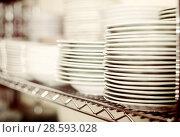 Купить «dish for table appointment in the tableware store», фото № 28593028, снято 29 ноября 2017 г. (c) Яков Филимонов / Фотобанк Лори
