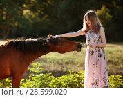 Девушка кормит лошадь. Стоковое фото, фотограф Марина Володько / Фотобанк Лори