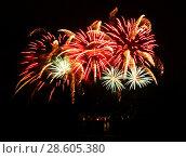 Купить «Celebratory firework in a night sky», фото № 28605380, снято 18 июля 2018 г. (c) ElenArt / Фотобанк Лори