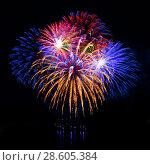 Купить «Celebratory firework in a night sky», фото № 28605384, снято 23 июля 2019 г. (c) ElenArt / Фотобанк Лори