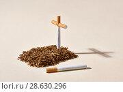 Купить «Tobacco grave with cigarette cross», фото № 28630296, снято 15 июня 2018 г. (c) Andriy Bezuglov / Фотобанк Лори