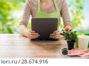Купить «close up of female gardener with tablet pc», фото № 28674916, снято 3 марта 2015 г. (c) Syda Productions / Фотобанк Лори