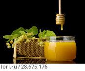 Купить «Drop of amber honey flows from wooden stirrer into jar, isolated on black», фото № 28675176, снято 6 июня 2018 г. (c) Сергей Молодиков / Фотобанк Лори