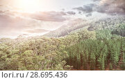 Купить « Aerial view of a forest in the mountains with clouds», фото № 28695436, снято 17 июня 2019 г. (c) Wavebreak Media / Фотобанк Лори