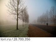 Купить «London wakes up to dense fog on a very cold and frosty morning in Finsbury Park, north London. Where: London, United Kingdom When: 28 Dec 2016 Credit: WENN.com», фото № 28700356, снято 28 декабря 2016 г. (c) age Fotostock / Фотобанк Лори