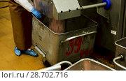 Купить «Workwoman preparing minced meat on professional equipment at meat processing factory», видеоролик № 28702716, снято 27 июня 2018 г. (c) Яков Филимонов / Фотобанк Лори