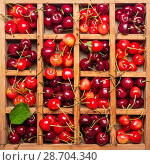 Wooden box with cells is full of pink and red cherries with stems. Стоковое фото, фотограф Сергей Молодиков / Фотобанк Лори