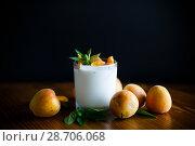 Купить «homemade yogurt with ripe apricots», фото № 28706068, снято 9 июля 2018 г. (c) Peredniankina / Фотобанк Лори