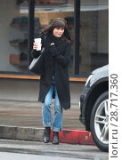 Купить «Selma Blair forgets to wear a hat on a rainy day in LA Featuring: Selma Blair Where: Los Angeles, California, United States When: 10 Jan 2017 Credit: WENN.com», фото № 28717360, снято 10 января 2017 г. (c) age Fotostock / Фотобанк Лори