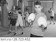 Купить «Boy boxer in gloves posing during boxing practicing», фото № 28723432, снято 12 апреля 2017 г. (c) Яков Филимонов / Фотобанк Лори