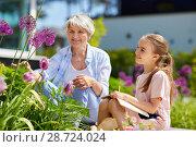 Купить «grandmother and girl study flowers at garden», фото № 28724024, снято 3 июня 2018 г. (c) Syda Productions / Фотобанк Лори