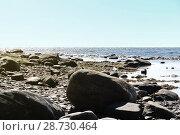 Купить «Огромные валуны на каменистом берегу моря, отлив, яркий солнечный день. Белое море, Терский берег, Кольский полуостров», фото № 28730464, снято 29 июля 2017 г. (c) Елена Александрова / Фотобанк Лори