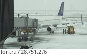 Купить «Service of the aircraft preparation for flight at a snowy aerodrome of Astana International Airport stock footage video», видеоролик № 28751276, снято 30 марта 2018 г. (c) Юлия Машкова / Фотобанк Лори