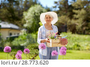 Купить «senior woman garden tools and flowers at summer», фото № 28773620, снято 3 июня 2018 г. (c) Syda Productions / Фотобанк Лори