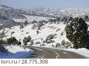 Купить «Road of Aragon with snow, Spain», фото № 28775308, снято 16 августа 2018 г. (c) age Fotostock / Фотобанк Лори